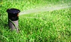 Lubbock Designscapes - Designscapes: $19 for Lawn Sprinkler Compliance Service from Designscapes ($65 Value)