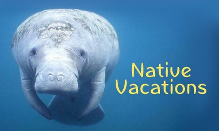Native Vacations - Crystal River: $25 for a Manatee Tour ($55 Value) or $15 for a Dolphin Viewing Tour ($30 Value) from Native Vacations in Crystal River