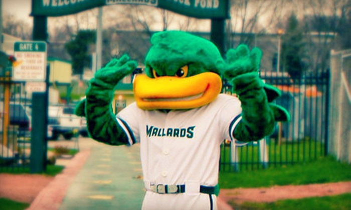 Madison Mallards - Duck Pond at Warner Park: Madison Mallards Baseball Game for Two at The Duck Pond at Warner Park on May 29 or June 4 (Up to Half Off)