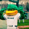 Madison Mallards Baseball – Up to Half Off Game