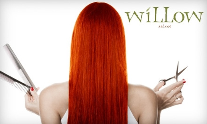 Willow Salon - Dundas: $40 for $80 Worth of Services at Willow Salon in Dundas
