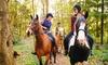 Kids' Horse Riding Lesson