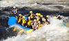 Wilderness Tour - Foresters Falls: $147 for a Memorial Day Weekend High-Water Raft Trip from Wilderness Tours in Beachburg, Ontario ($294 Value)