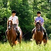 Half Off Horseback-Riding or Horsemanship Lessons at Fancy Hill Farm