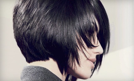 Haircut, Style (a $30 value) and Deep-Conditioning Treatment ($10 value; a $40 total value) - Regis Salon in Cedar Rapids