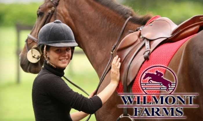Wilmont Farms - San Juan Capistrano: $49 for Two 60-Minute English Horse-Riding Lessons at Wilmont Farms in San Juan Capistrano ($120 Value)