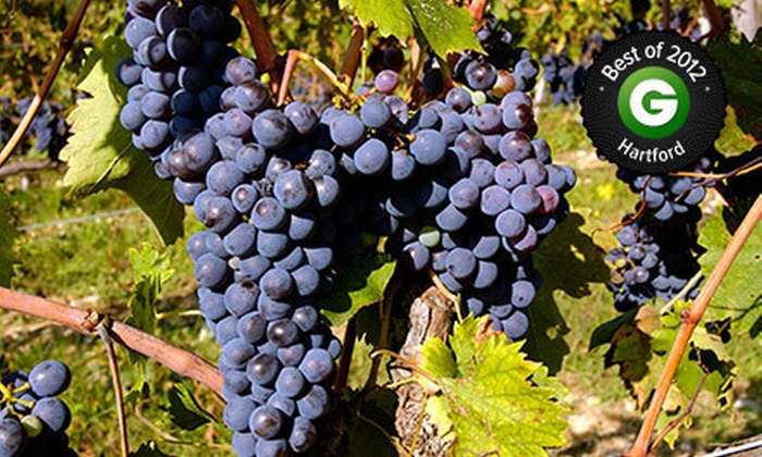 Newport Vineyards - Middletown: Vineyard Tour and Tasting for Two or Four at Newport Vineyards (Up to Half Off)