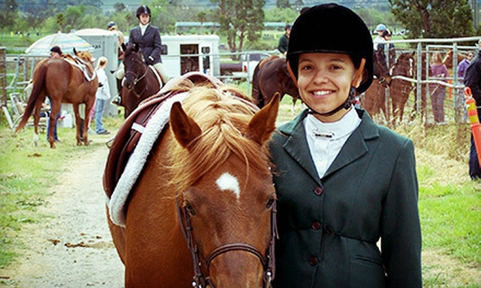Windmill Ranch - Livermore: Child or Adult Horseback-Riding Lessons at Windmill Ranch (Up to 67% Off). Six Options Available.