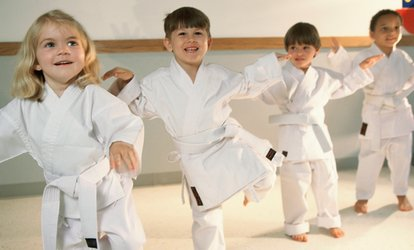 image for Six Weeks of Fitness-Kickboxing or Kids' <strong>Martial-Arts</strong> Classes at Freedom <strong>Martial Arts</strong> (Up to 69% Off)