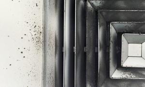 Lone Star Pro Services: Up to 77% Off Air-duct & dryer vent cleaning at Lone Star Pro Services