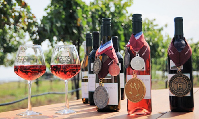 Pilot Knob Vineyard - Briggs: Picnic in the Vines Package for Two or Four with Snacks and Wineglasses at Pilot Knob Vineyard (56% Off)