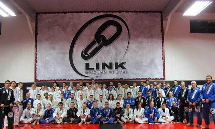 Team Link Natick - Natick: Two Weeks of Unlimited Brazilian Jiu-Jitsu Classes at Team Link Natick (44% Off)