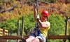 Colorado Adventure Center - Dumont: Clear Creek Zipline Tours for One or Two at Colorado Adventure Center (Up to 44% Off)