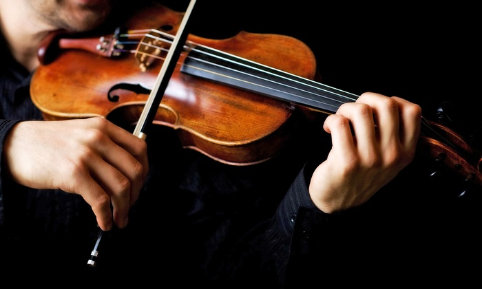 Tampa Bay Music Academy - Tampa Bay Music Academy: Viola, Violin, Voice, or Piano Lessons at Tampa Bay Music Academy (Up to 55% Off). Three Options Available.