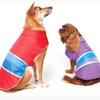 $11.99 for Lookin' Good Dog Coats