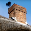 Up to 54% Off Chimney or Duct Cleaning