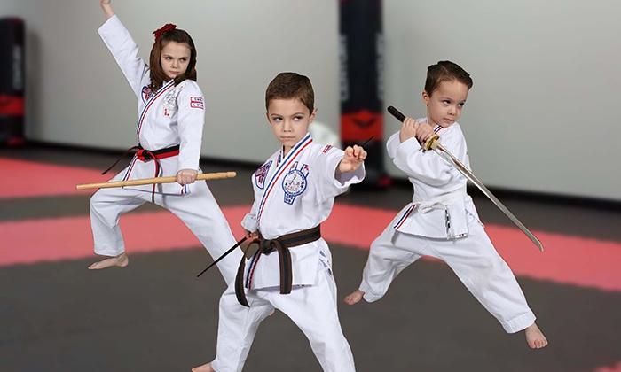 Excel Martial Arts - Warrenton: $13 for $50 Worth of Martial-Arts Lessons — Excel Martial Arts