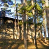 Up to Half Off Stay at Lake Wister State Park