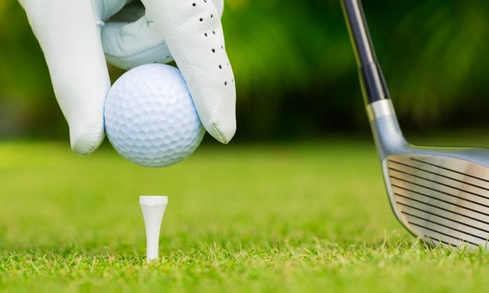 Golfclub München West Odelzhausen - Golfclub München West Odelzhausen,: DGV-Platzreifekurs im Golfclub München West Odelzhausen ab 89,90 € (bis zu 62% sparen*)