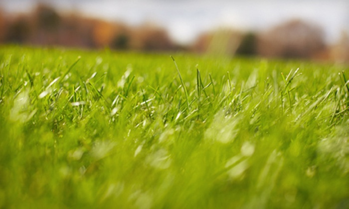 New Caztle Landscaping - Wilmington-Newark: Spring Lawn Aeration for Up to 6,000 or 12,000 Square Feet from New Caztle Landscaping (Up to 62% Off)