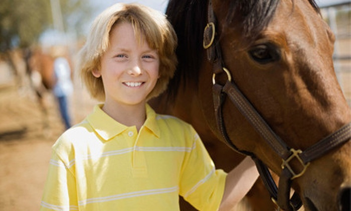 Linden Hill Stables - Kearney: Private or Group Horseback-Riding Lesson for Two, or Group Riding Lesson for Four at Linden Hill Stables (Up to 55% Off)