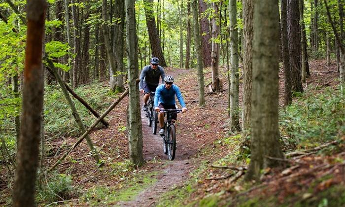Hardwood Ski and Bike - Oro-Medonte: Half-Day, Cross-Country Mountain Bike Ride with Bike Rental for 2 or 4 at Hardwood Ski and Bike (Up to 65% Off)