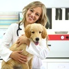 68% Off Comprehensive Pet Exam at Healthy Pets Veterinary Care