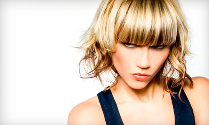 Lisa Flowers at Hot Heads Hair Salon - Gray's Creek Association: Haircut and Deep Conditioning with Optional Partial Highlights from Lisa Flowers at Hot Heads Hair Salon (Up to 69% Off)