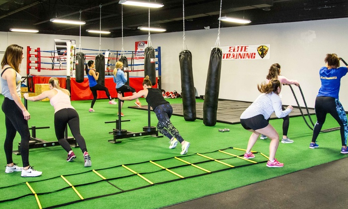 Elite Training - Elite Training Performance Center- Clinton Township: 5 or 10 Fitness Classes at Elite Training (Up to 58% Off)