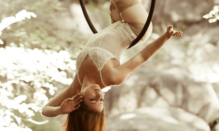 Six Aerial Silk or Hoop Classes or Five Pole-Dancing Classes at North Shore Pole Fitness (Up to 51% Off)