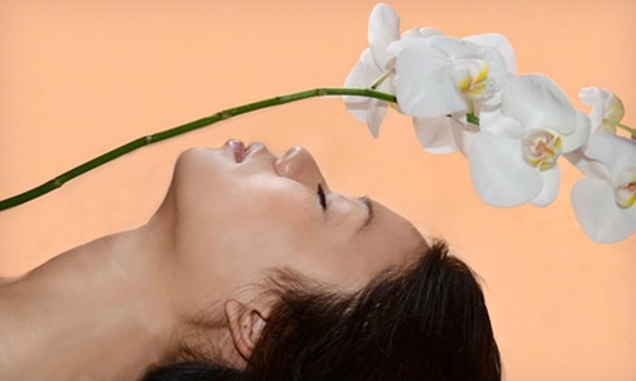 Tereza Maria Pupeza Skin Care - Winchester Town Center: Brazilian or Bikini Wax, Choice of Facial or Microdermabrasion, or Facial and Microdermabrasion at Tereza Maria Pupeza Skin Care (Up to 68% Off)