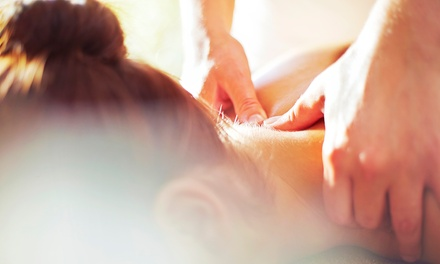Choice of Back, Neck and Shoulders Massage with Espa Express Facial, Drink and a Sweet Treat at Bindon Abbey (62% Off)