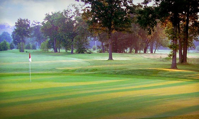 Meadows Golf Club - Meadows Golf Club: 18-Hole Round of Golf with Cart on a Weekday or Weekend at Meadows Golf Club in Lincoln Park (51% Off)