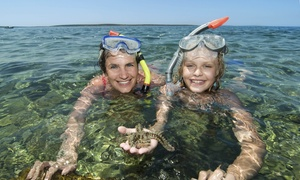 Southern Wave Sailing Charter.: Three-Hour Snorkeling Cruise for Up to Two or Four from Southern Wave Sailing Charters (Up to 18% Off)