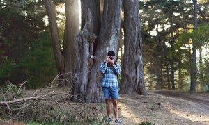 Saano Adventures: $55 for a 90-Minute Walking Photography Class in Golden Gate Park from Saano Adventures ($85 Value)
