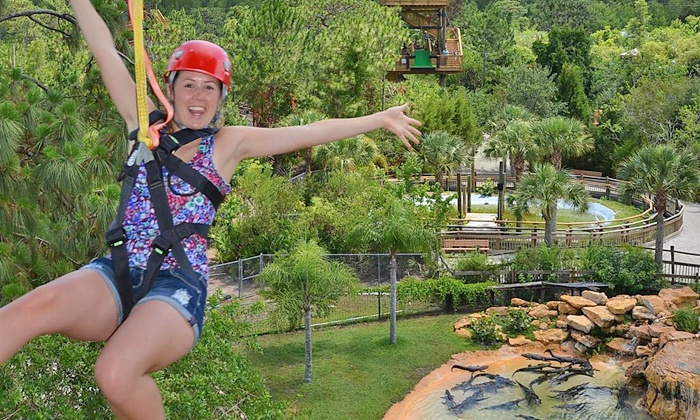Gatorland - Orlando: Zipline Ride and Gatorland Visit for One, Two, or Four (Up to 52% Off)