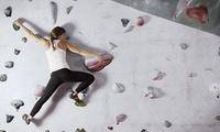 Tageskarte für Bouldern inkl. Kletterschuhe und Einweisung durch Trainerbeim Boulder-Point (bis zu 63% sparen*)