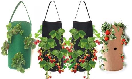 1, 2 o 4 macetas tipo bolsa colgante para plantas vegetales