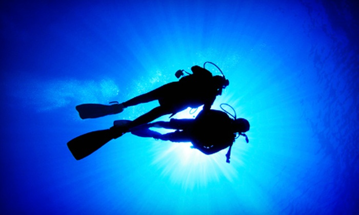 D. D. Dive - Glenview: $160 for a PADI Open-Water Diving Course at D. D. Dive ($325 Value)