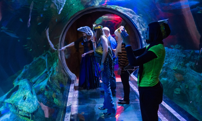 Sea Life Arizona Aquarium - Sea Life Arizona: $33 for Sharks After Dark Event for Two Adults on April 25 at Sea Life Arizona Aquarium ($43 Value)