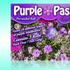 Purple Passion Roll-out Garden Kit