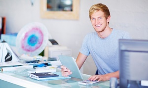 Online Academies: Bookkeeping or Payroll Online Course, or Both from Online Academies (Up to 92% Off)