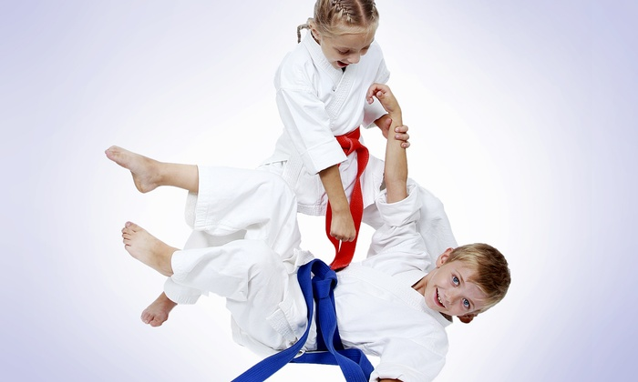 The Forge Martial Arts and Fitness Training Center - Multiple Locations: One Month of Kids or Adult Jiu-Jitsu Classes at The Forge Martial Arts and Fitness Training Center (67% Off)