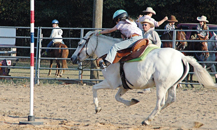 Liberty Run Farm - 5: Two or Four One-Hour Private Horseback Lessons at Liberty Run Farm (Up to 52% Off)