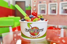 CherryBerry: Frozen Yogurt at CherryBerry (40% Off). Four Options Available.