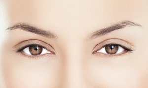 Arch Salon: Three Eyebrow Threadings or a Signature Facial with Optional Eyebrow Threading at Arch Salon (Up to 51% Off)