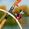 Full Day of Fishing £3.50