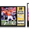 NFL Player Plaqueser Plaques