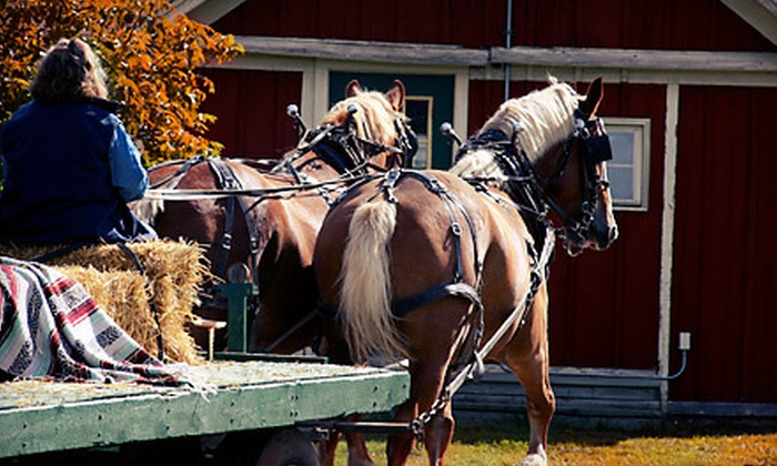 Carousel Horse Farm - Multiple Locations: Wagon Ride with Hot Chocolate for 4, 6, or Up to 25 at Carousel Horse Farm (Up to 67% Off)