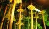 Schwindelfrei - Kletterwald Schwindelfrei: Nachtklettern für 1, 2 oder 4 Personen im Kletterpark Schwindelfrei ab 14,90 € (bis zu 54% sparen*)
